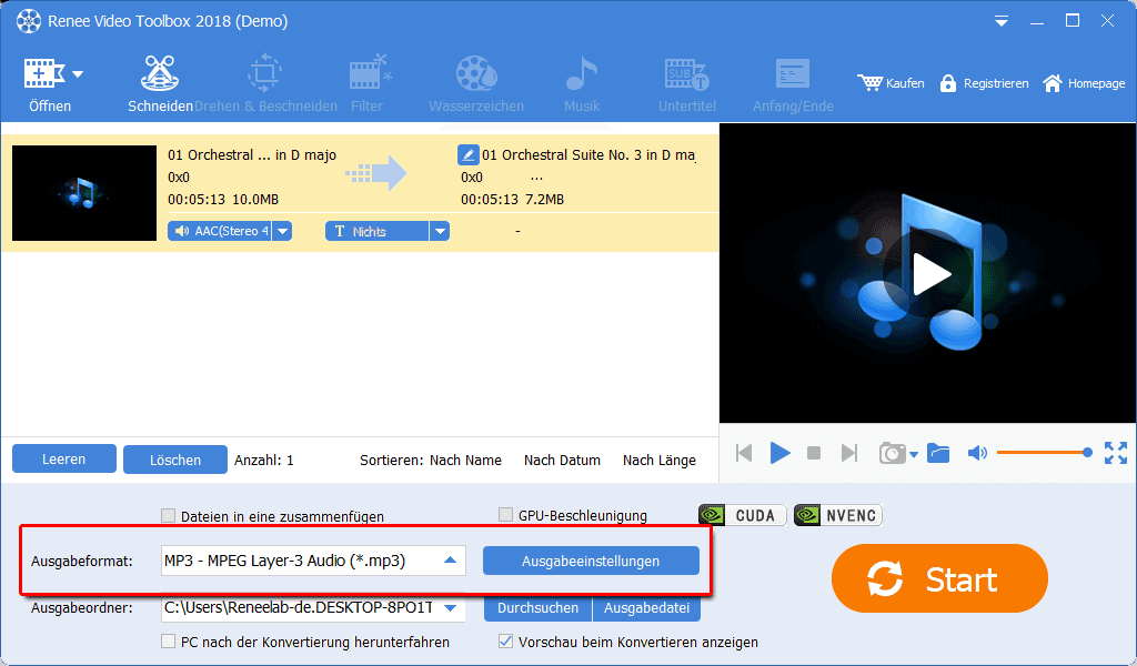 Renee Video Editor Pro_Musik_M4A in MP3 umwandeln