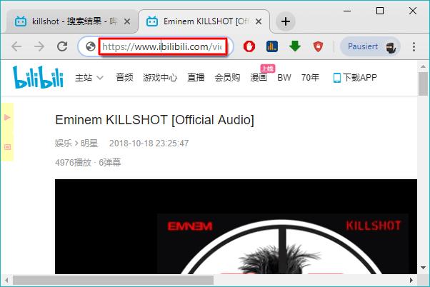 Bilibili Downloader_1